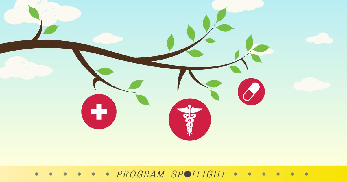 The Doctor of Nursing Practice – Low Hanging Enrollment